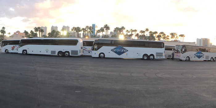motor coaches lined up